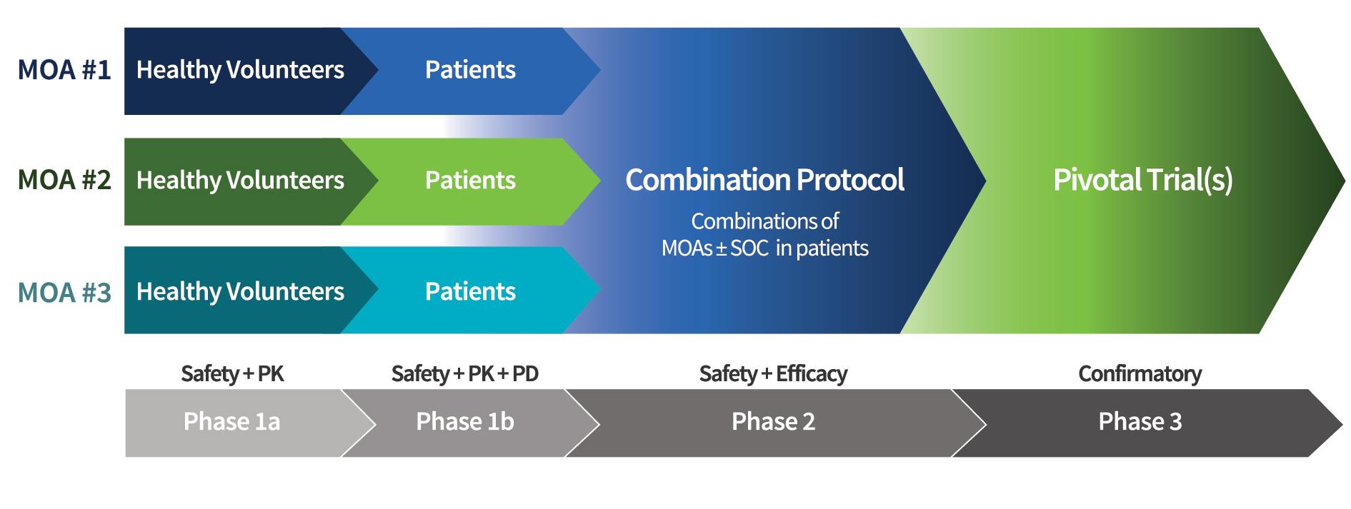 Aligos Clinical Development Strategy